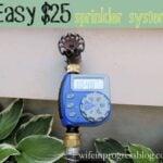 $25 Automatic Sprinkler System | Wife in Progress