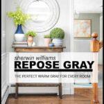 Sherwin Williams Repose gray is a warm gray