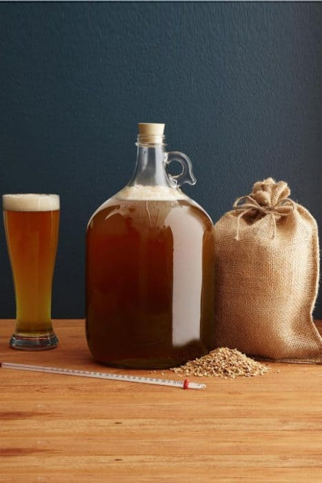 ipa-brewing-kit