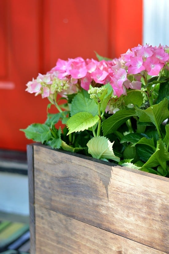 a $10 DIY wood planter box tutorial