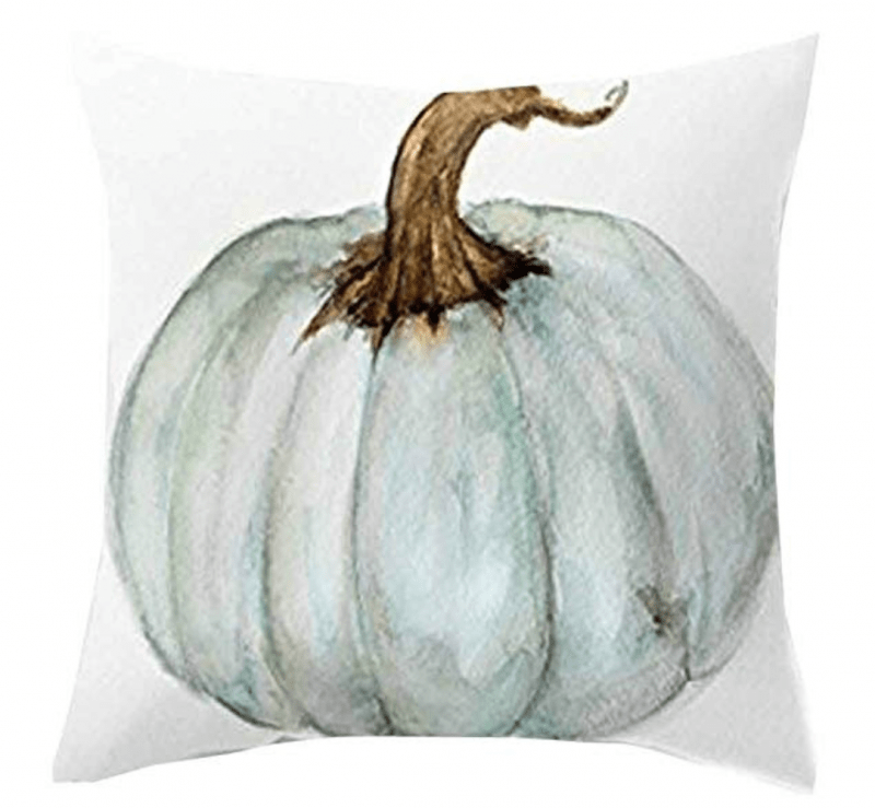 cheap fall throw pillows from Amazon