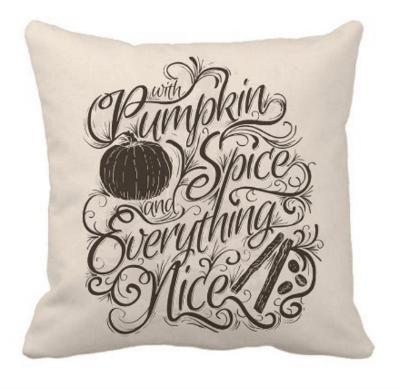 cheap fall pillows under $10