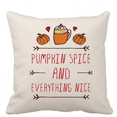 Pumpkin spice and everything nice pillow from Amazon