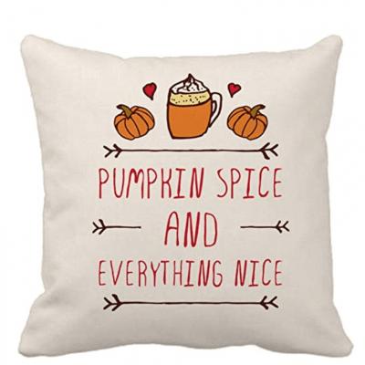 Cheap Throw Pillows for Fall