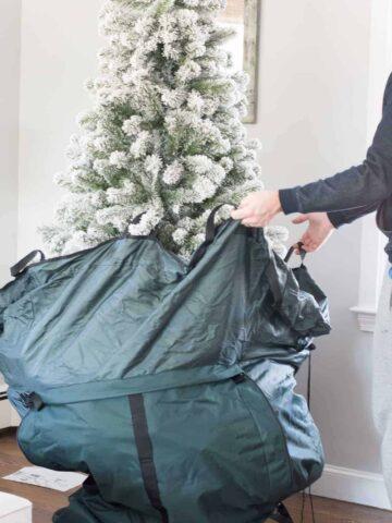 putting a Christmas tree into a storage bag