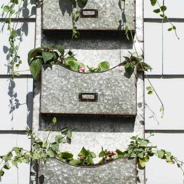 flowers in a metal mailbox sorter
