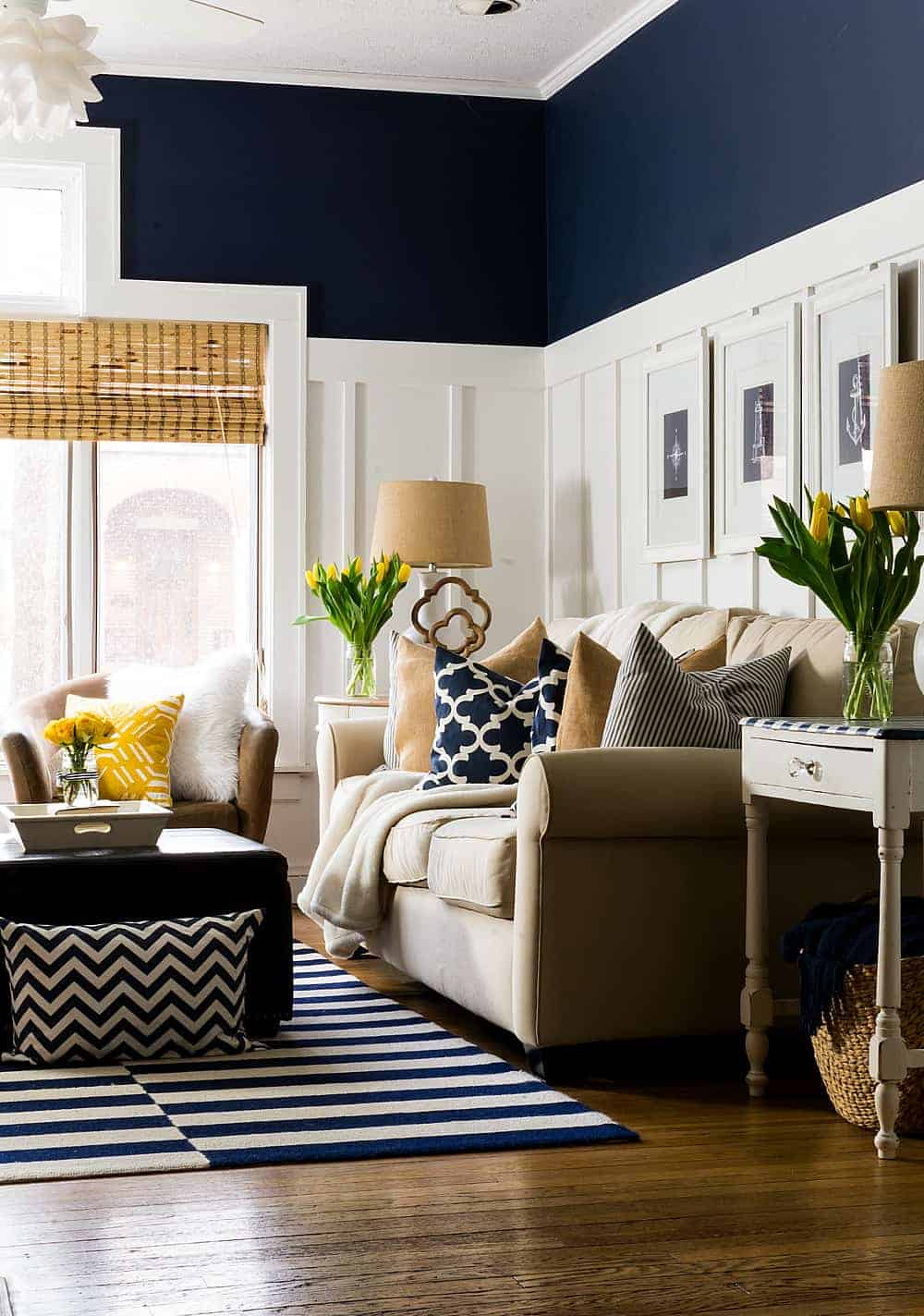 Navy Blue and White Living Room Ideas