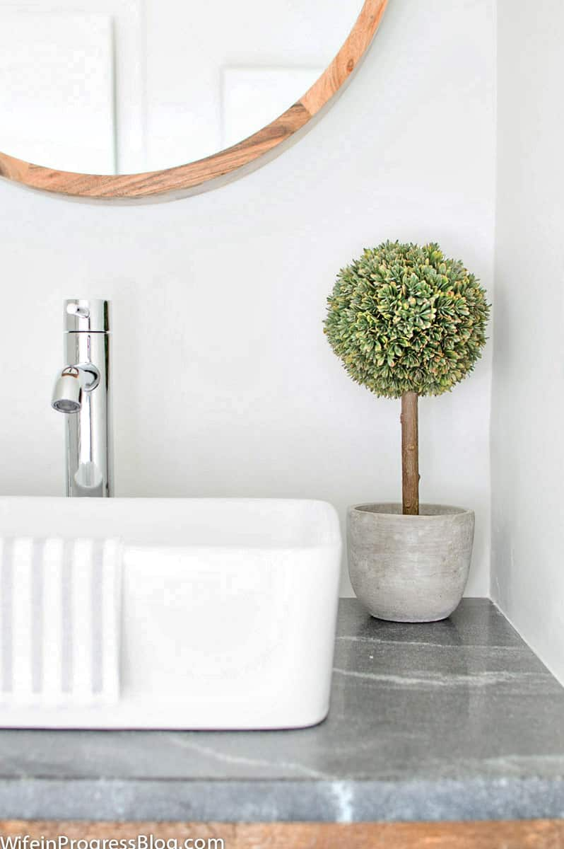 A small topiary sits near a farmhouse-style white sink