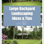 Large Backyard Landscaping Ideas