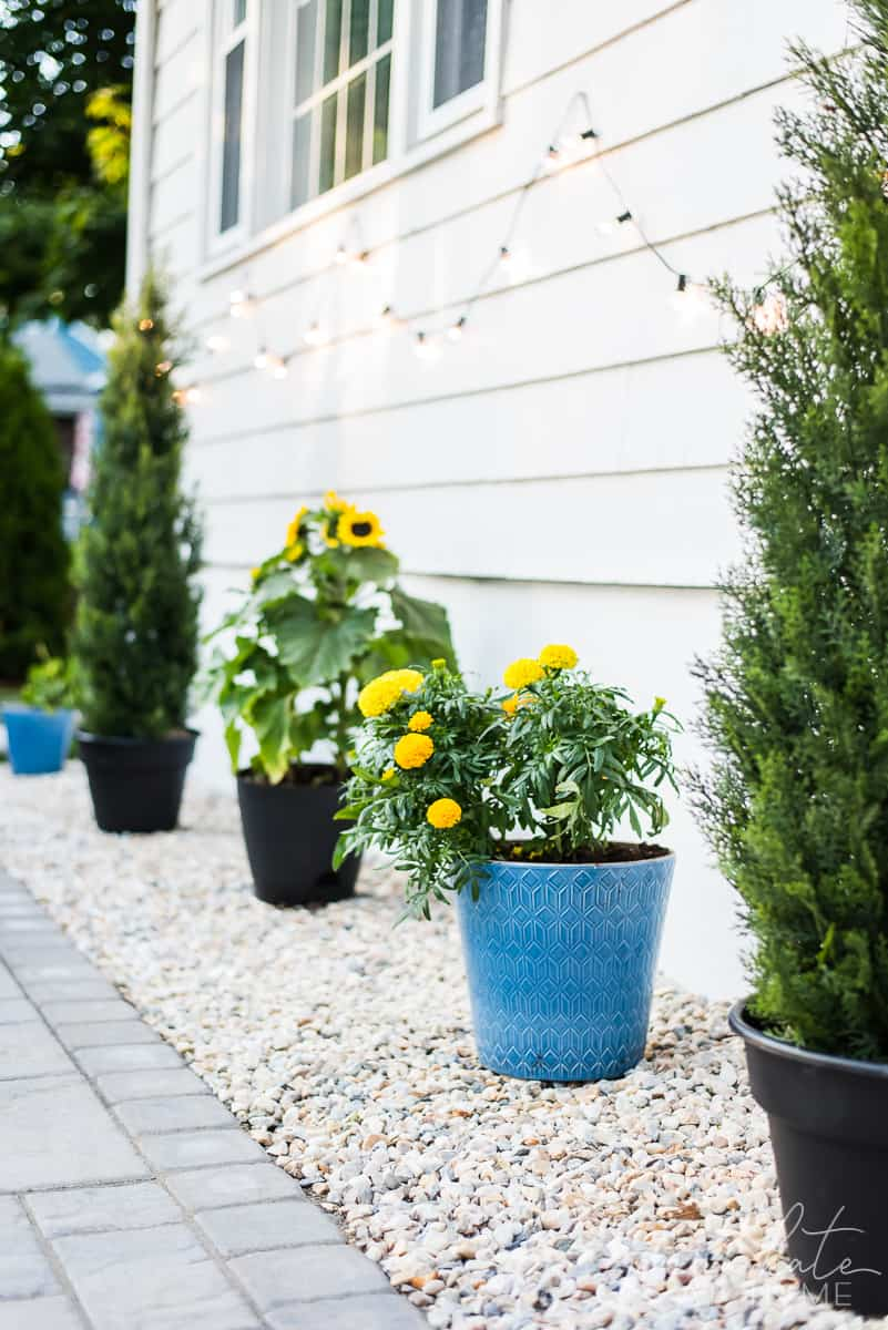 Draining border for outdoor patio with string lights