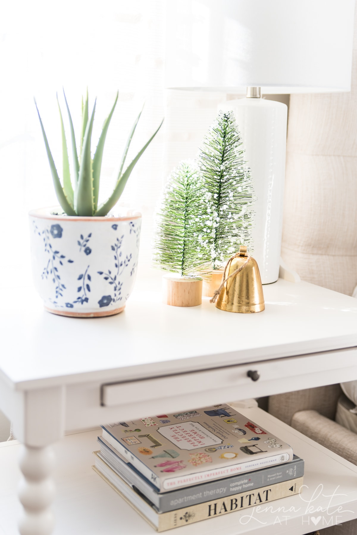 Aloe plant, bottle brush trees and a small bell on the bedside table
