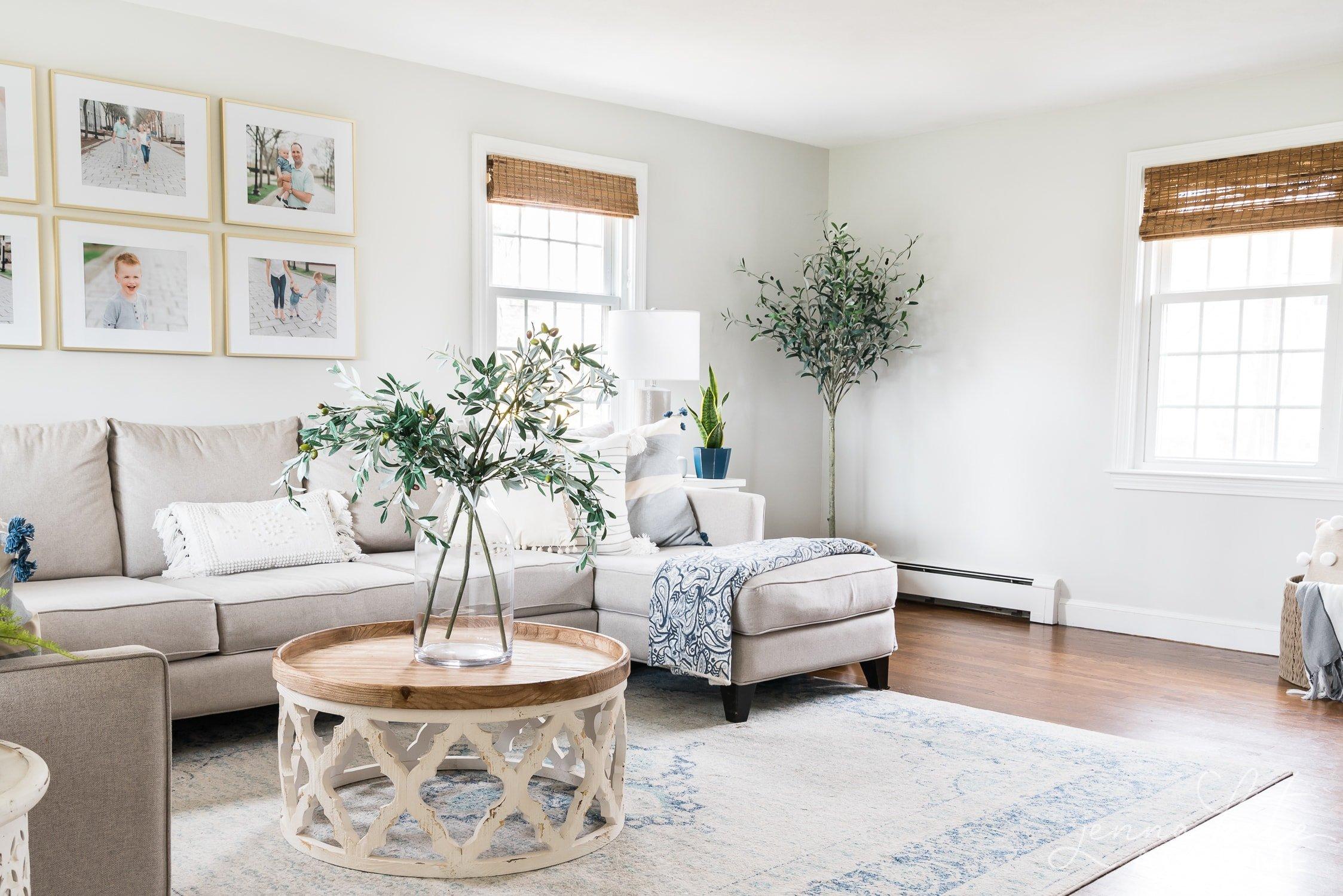 Repose gray lightened 50% living room wall paint