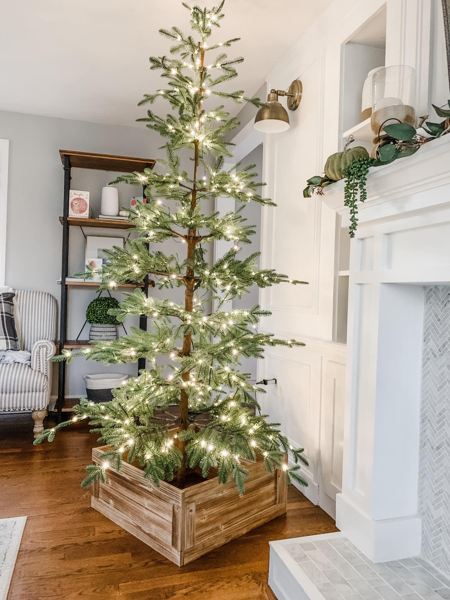 Christmas trees don't have to be decorated to look good.
