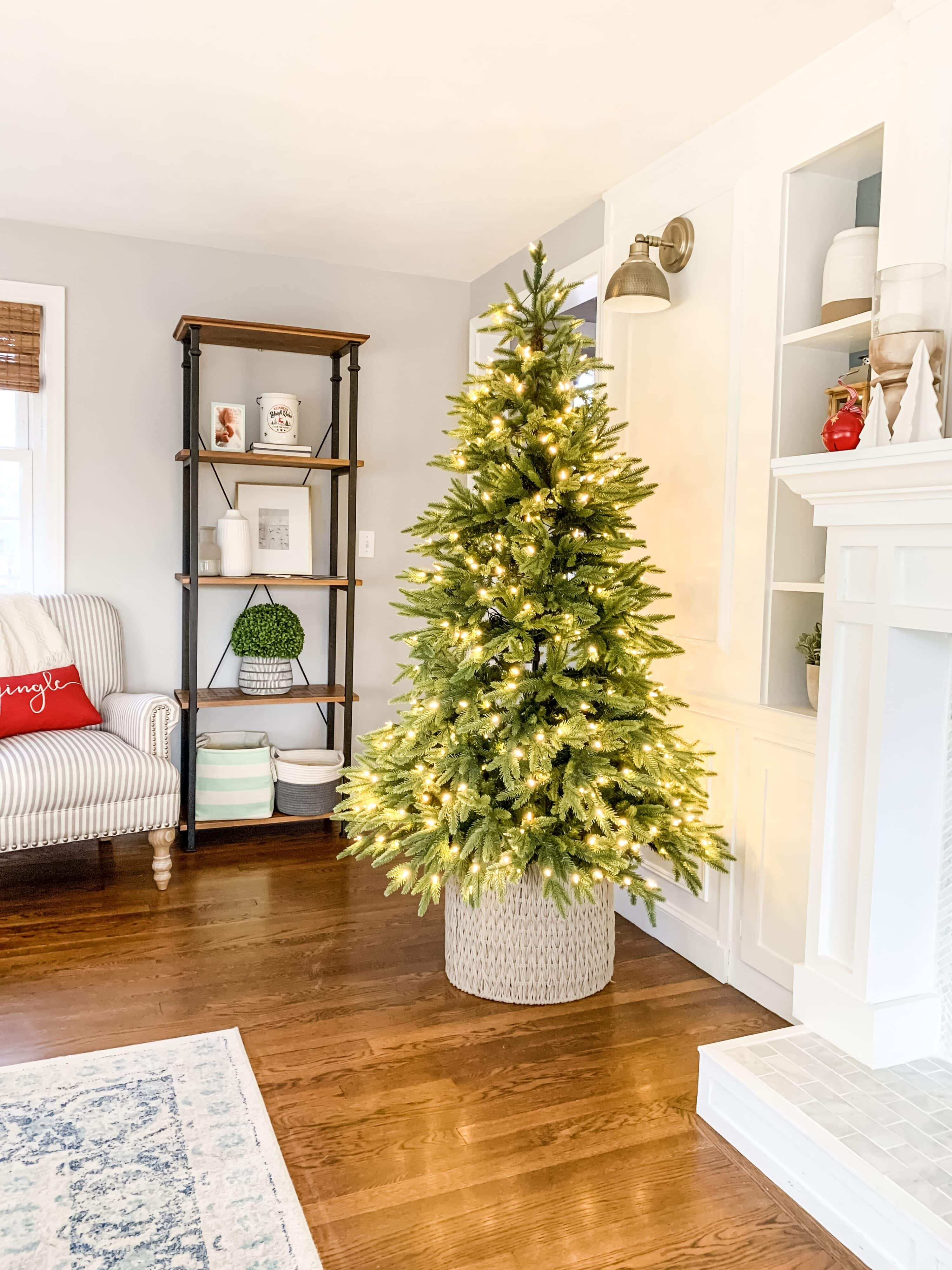 Christmas tree with no decorations on it