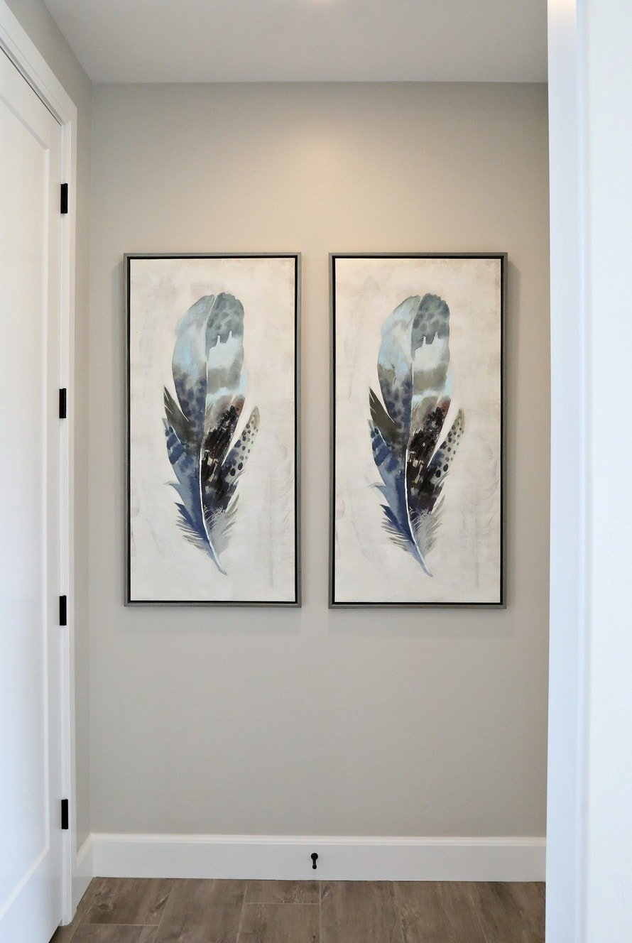 feather artwork on walls painted benjamin moore collingwood